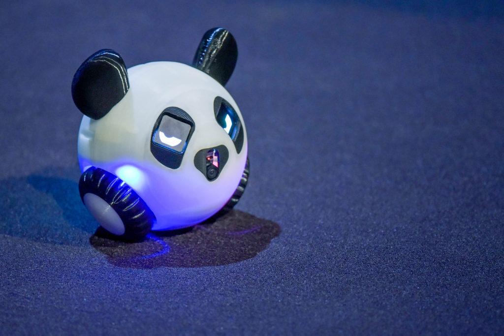 Viies saade jäi viimaseks GaGa Pandale